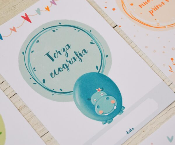 Set Pregnancy Cards